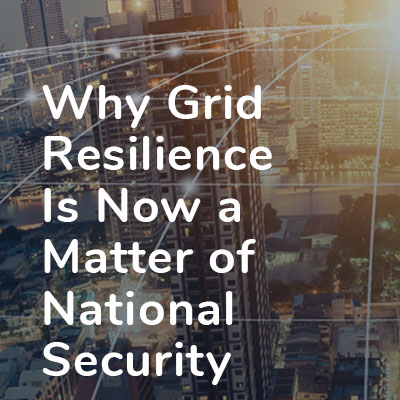 Grid Resilience